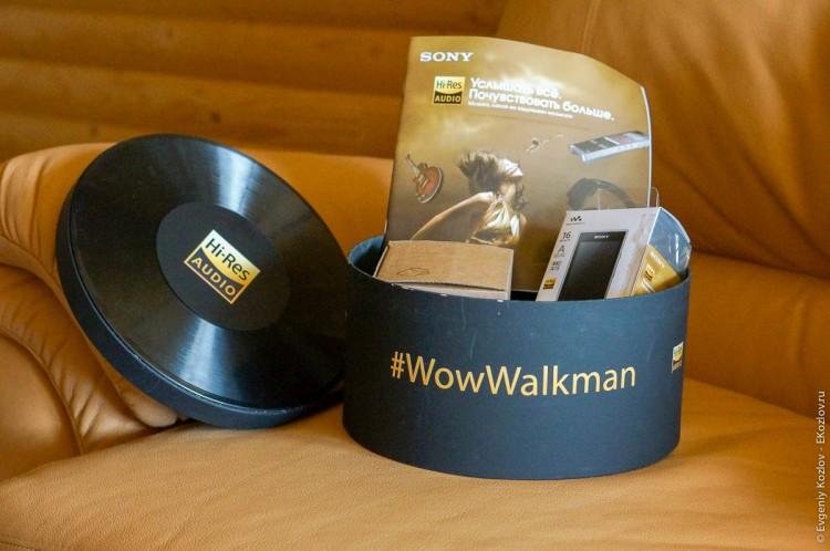 Sony Walkman NWZ-A15-2