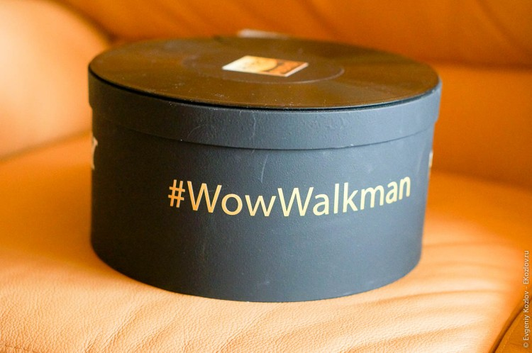 Sony Walkman NWZ-A15-1